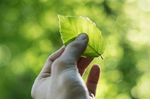 duurzaamheid-en-participatie